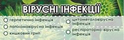 Природні цільові комплекси «Вірусні інфекції»
