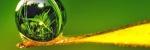 БАР - біоактивна рідина (моно) - рідкі форми